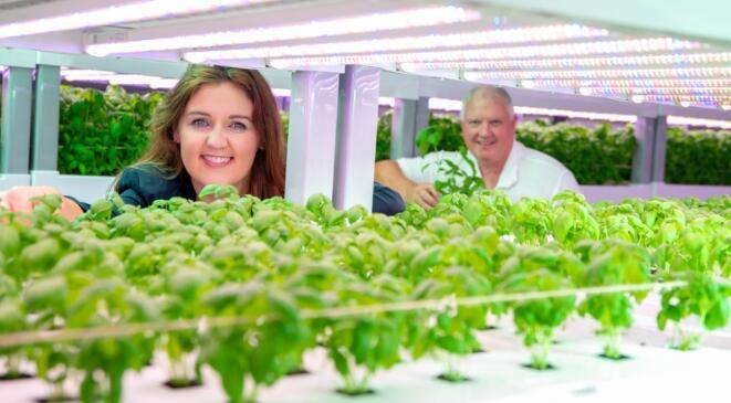 指南针集团爱尔兰已与爱尔兰首个商业垂直种植农场达成协议